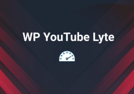 WP YouTube Lyte